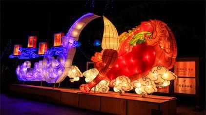 中国翰园灯光节 (10)