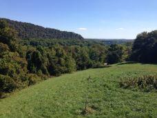 Patowmack Farm-Lovettsville