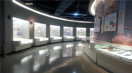 贝壳博物馆14