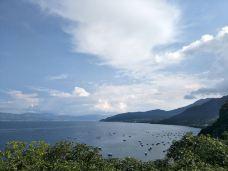 禄充风景区-抚仙湖-136****9689