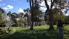 Amazement Farm & Fun Park