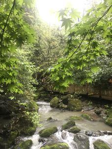 天生桥-神农架-柯克哥
