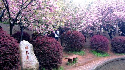 郑州世纪欢乐园 (2)