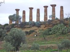 Archaeological Area of Agrigento-阿格里真托