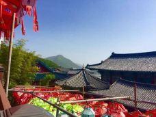 三光寺-釜山-小鱼儿2015