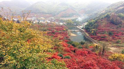 丹山赤水 (4)