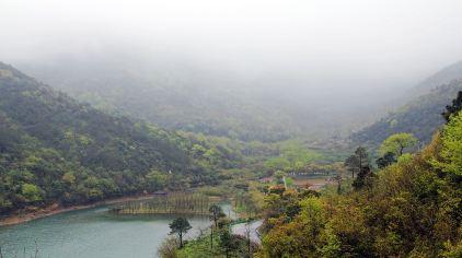 茶人谷 (2)