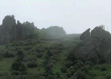 板壁岩-神农架-M49****619