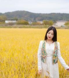 岩手县游记图文-日本旅行,去岩手寻找秋季的小森林