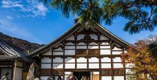 天龙寺-京都-zhulei831230