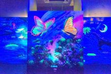 槟城玻璃博物馆-乔治市-doris圈圈