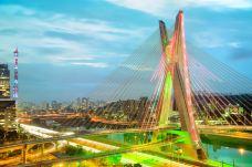 奥克塔维奥·弗里亚斯·德奥利韦拉大桥-圣保罗-doris圈圈