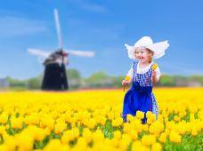 荷兰阿姆斯特丹+鹿特丹+海牙9日私家团(5钻)·【亲子团·荷兰深度旅行·睡到自然醒·1单1团·纯玩】五钻酒店+房间大·荷兰风车+羊角村+鹿特丹游船观光+库肯霍夫公园+撒尿小童·专车·专属管家