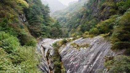 西安-朱雀国家森林公园-2