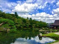 天龙寺-京都-M33****4460
