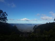 Blue Mountains Walking Tours-卡通巴