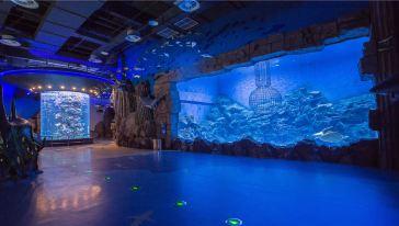 芜湖大白鲸海洋公园 (3)