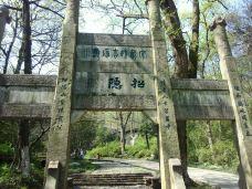 南山-镇江-300****764