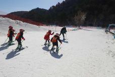 树顶漫步滑雪基地-黄龙-M24****4454