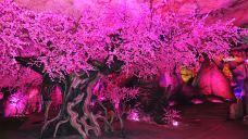 桃花岩-灵川
