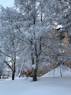 Luleå tekniska universitet-吕勒奥