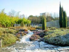Parc Henri Matisse-里尔