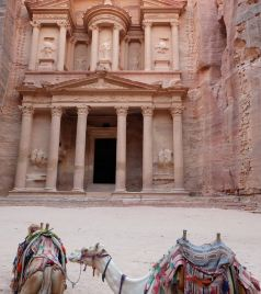 佩特拉游记图文-第721回:中东宝藏玫瑰圣城,佩特拉山香料之路