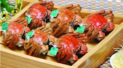 溱湖螃蟹图1
