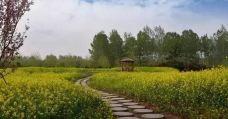 葛天源旅游风景区-长葛-SUN12999