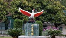 朱鹮自然保护区-洋县-周游列国