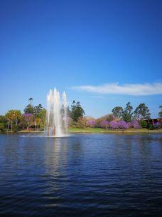 昆士兰大学-布里斯班-234****526