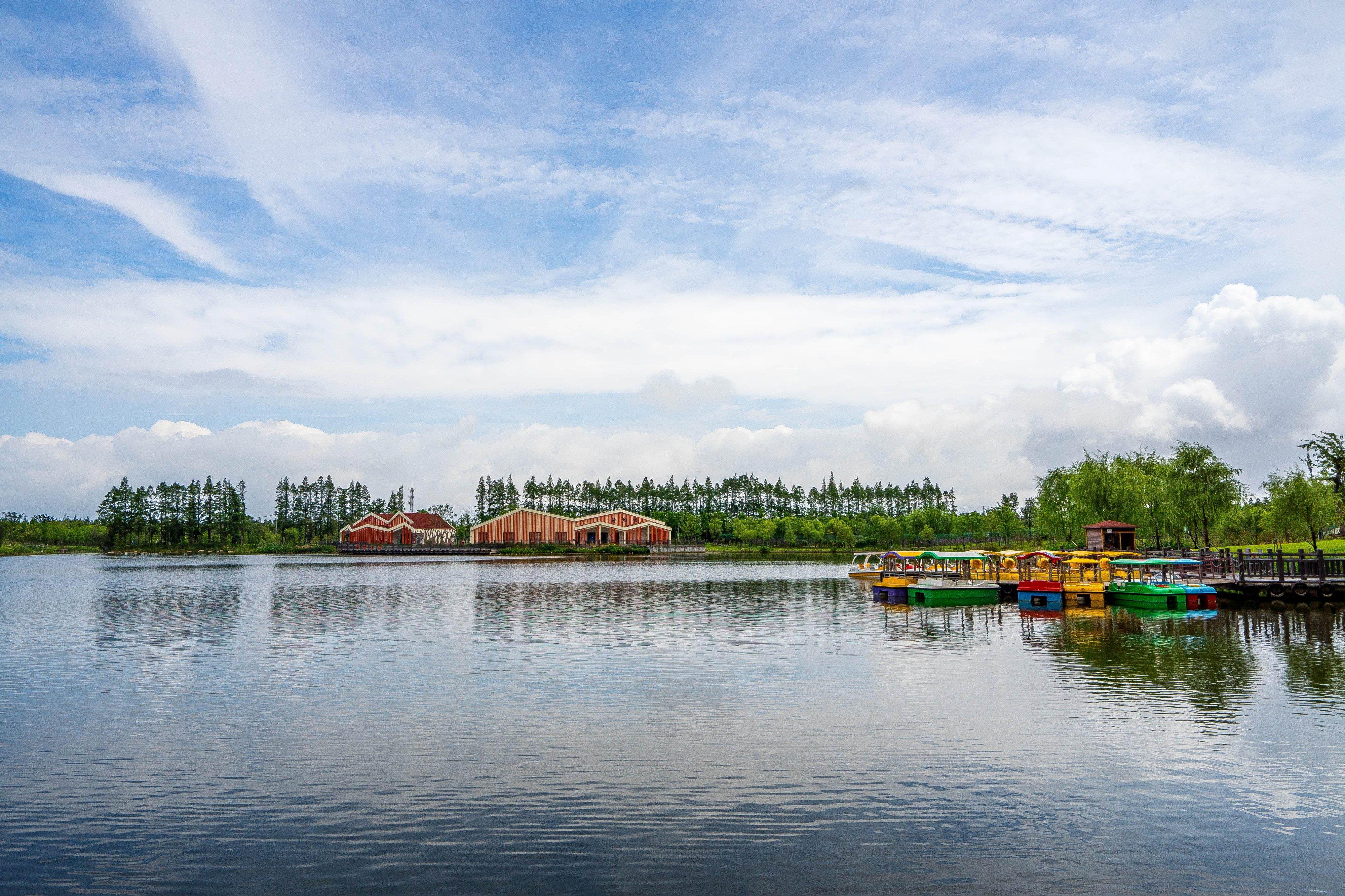 上海崇明长兴岛郊野公园 -07178