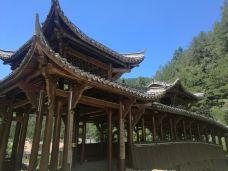 百山祖景区-庆元-水晶渺渺