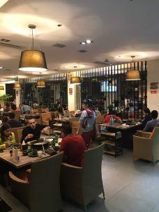 凤园椰珍椰子鸡主题餐厅(天河南二路店)-广州