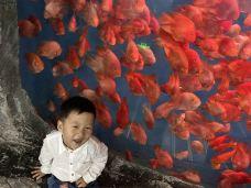 北京自然博物馆-北京