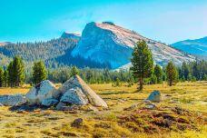 土伦草甸-优胜美地国家公园及周边地区-尊敬的会员