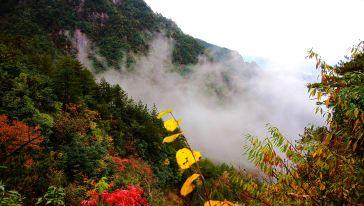 大明山4140 (15)