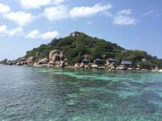 南园岛-苏梅岛-Steven