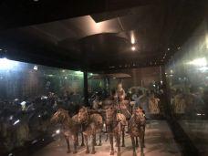 秦陵铜车马-临潼区