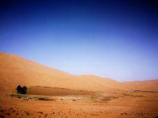 必鲁图沙峰-阿拉善-chocosa
