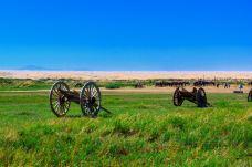通湖湿地草原旅游区-阿拉善左旗-尊敬的会员