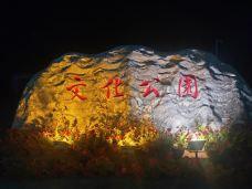 文化公园-德惠-M15****981