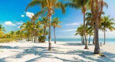 克兰登公园-迈阿密-doris圈圈