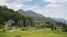 中国田鱼村