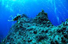 天宁蓝洞潜水点-天宁岛-在路上的Jorick
