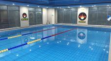 武汉伯林恒温游泳馆-武汉-AIian