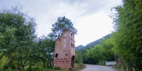 青龍山森林公園