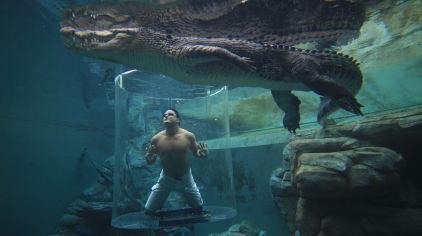可可洛思鳄鱼湾主题公园15