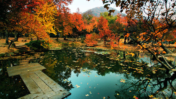 Tianping Mountain Admission Ticket