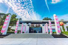 奥林匹克博物馆-洛桑-doris圈圈